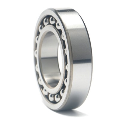 NTN 6008E  Single Row Ball Bearings