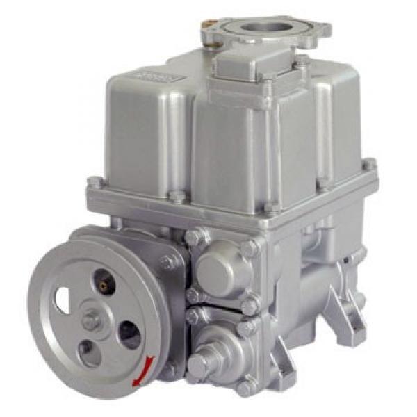 Vickers PV016R1K1T1NMRZ+PVAC1PCMNL35 Piston Pump PV Series #1 image
