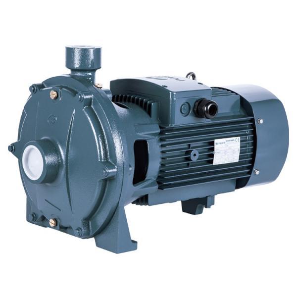 Vickers PV016R1K1T1VUPG4545 Piston Pump PV Series #1 image